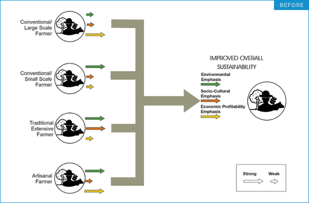 """A flowchart explaining the content of """"Different pathways for different types of farmers"""", before design improvements"""